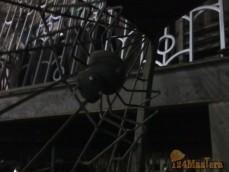 Компания ООО Иванов и К