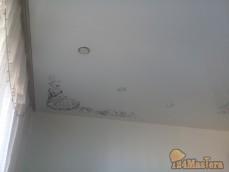 Натяжные потолки с фото печатью
